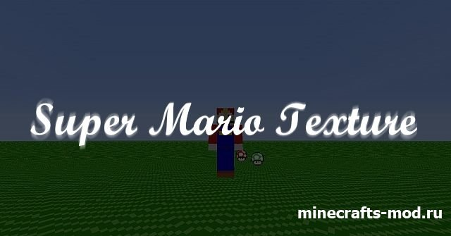Super Mario Texture (Супер Мариокрафтер) 1.8