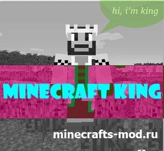Minecraft King